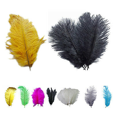 12 Kinds of Color New Natural 10-12 Inch Ostrich Feathers Decorations WD