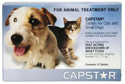 Capstar11 - Cats and Dogs Under 11kg