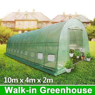 10x4M Galvanised pole super strong Walk-in Polytunnel Greenhouse