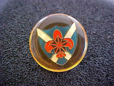 Scout Insignia Badge Blue and White Shield