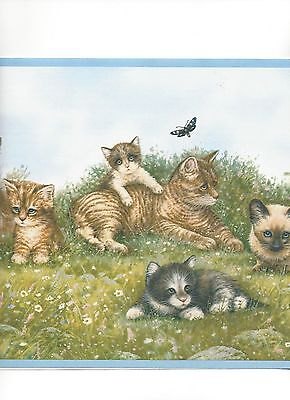 Kitten / Kittens and Playmates with Blue Edge Cat Wallpaper Border YK0131BD
