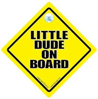 Little Dude On Board Car Sign, Baby On Board Car Sign, Little Dude Car Sign, Lit