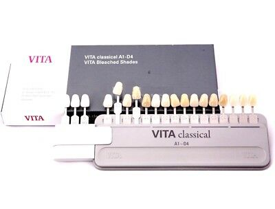 VITA Classical Shade Guide A1-D4 with attached bleached extension 19 Colors
