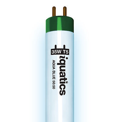 iQuatics 35w T5 Bulb - JUWEL Compatible AquaBlue 50:50 - White / Blue Blend