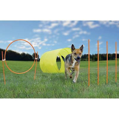 Kygen Dog Agility Training 9 pc Kit for Outdoors Easy Instructions in Travel Bag