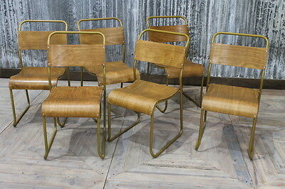 Gold Framed Stacking School Chairs Vintage Large Quantity Available