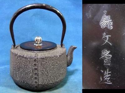 Japanese Ryubun-do Antique old Iron Tea Kettle Tetsubin teapot Chagama #7350