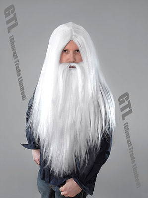 White Santa Wizard Wig & Long Beard Halloween Adult Men's Fancy Dress Accessory