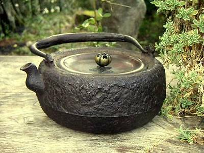 Japanese Antique old Iron Tea Kettle Tetsubin teapot Chagama #2010