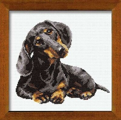 Dachshund Counted Cross Stitch Kit-25cm x 25cm 16 Count. Free Delivery