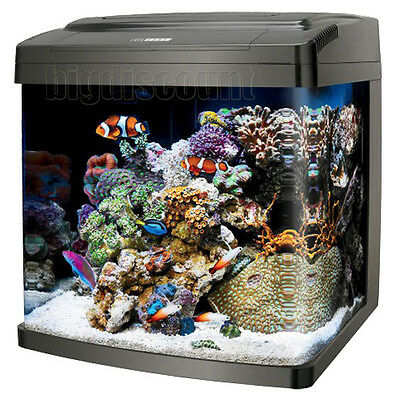 60L Aquarium Fish Tank Rounded Edge Glass Set with Filter Pump and LED Lights