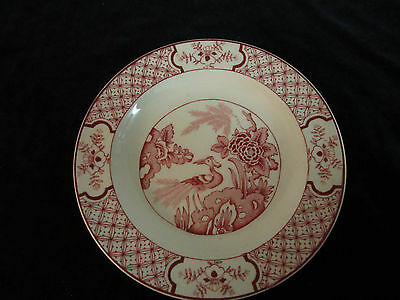 Yuan Vintage Small Plate Bird Flowers red pink transferware Wood & Sons England