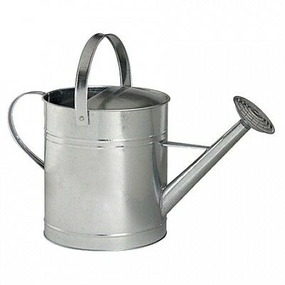 Galvanised Watering Can with Movable Top Handle 10L. Delivery is Free