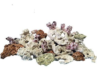 25 Kg Mixed Set Of Stones For Malawi Cichlid Tanganyika Aquarium Ocean Rock