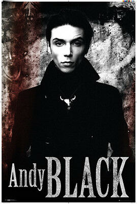 Poster Andy Black