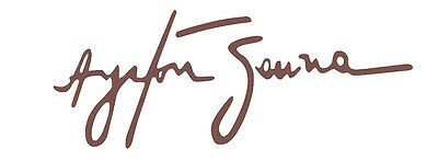 Ayrton Senna Autograph Design Decal / Sticker for car or any flat smoothsurface