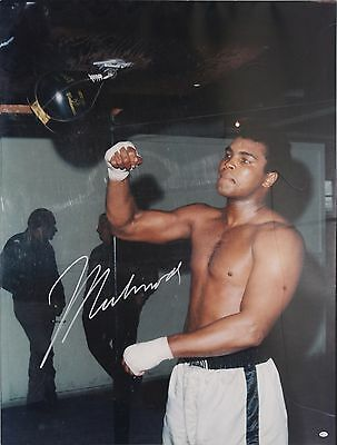"Muhammad Ali signed Speed Bag 30"" x 40"" Photo Unframed Online Authentics"