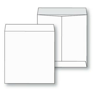 Envelopes Jumbo Size White Paper 250/lot Extra Large all sizes