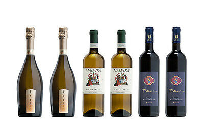 Mixed Smart Italian Wine Selection (Case of 6)
