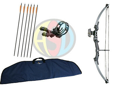 ASD Lynx Silver & Black Adult Archery Compound Bow Package W/Arrows,Case & Sight