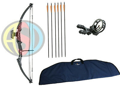ASD Lynx Black Adult Archery Compound Bow Package W/ Arrows, Case & F/O Sight