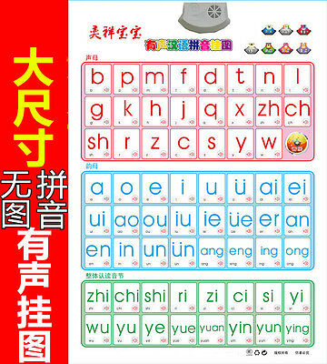 Voiced Chinese Alphabet Wall Stickers Decals Letters Kids Learning Hanyu Pinyin