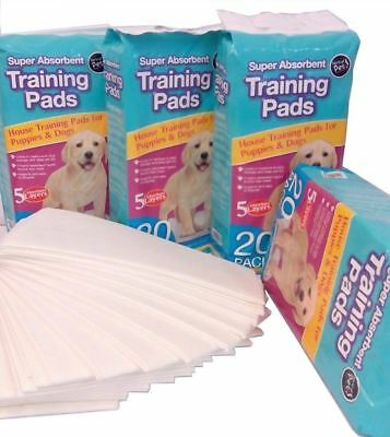 Dog Puppy House Large Absorbent Training Trainer Pads Toilet Wee 60 X 45Cm New