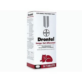 Drontal Allwormer for Large Cats up to 6kg