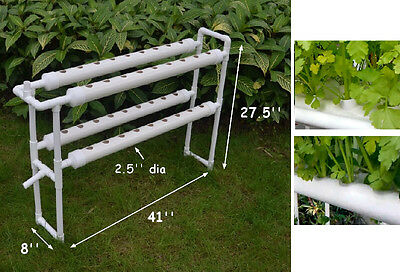 Hydroponic Site Grow Kit Ebb and Flow Deep Water Culture Garden 36 Holes Plant