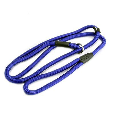 Nylon Rope Dog whisperer Style Slip Train Leash Lead Collar Blue SP