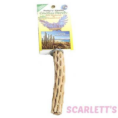 Polly's Pet Products Cholla Cactus Perch Small Bird