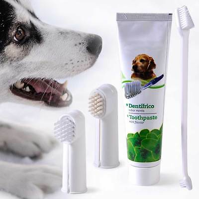 For Pet Dog Cat Puppy Teeth Dental Care Hygiene Brush Toothbrush Toothpaste Kit