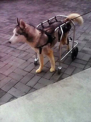New Paralysis Mobility Walker Dog Harness Wheelchair Size Large Dog Cart Friend