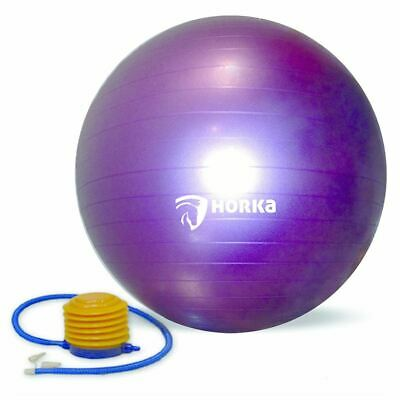 Horka Equestrian Treat Boredom Buster Mega Jolly Pony Horse Play Ball One Size