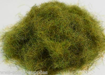 WWS  Summer Static Grass 10mm 10g Railways Scenery Landscape Terrain OO Gauge