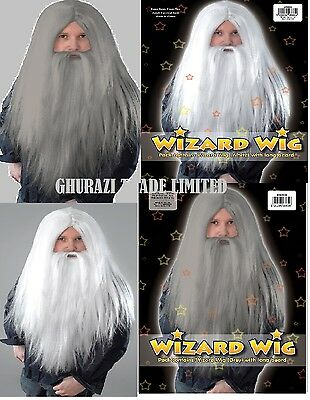 Grey And White Wizard Wig & Long Beard Fancy Dress Lord Of The Rings Accessory