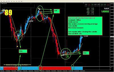 4d forex trading system