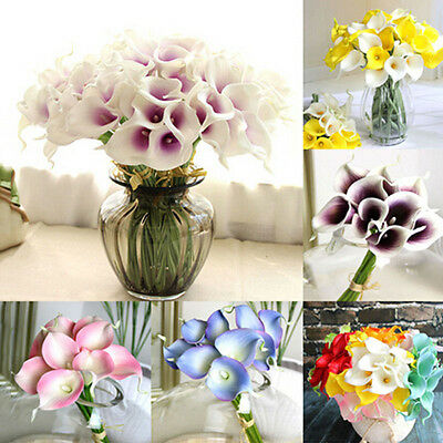 2×Colorful Calla Lily Bulb Flower Roots (it's not seed) Home Garden Decor Plants