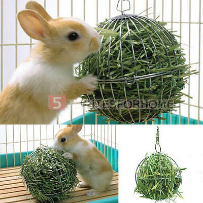 Stainless Steel Ball Toy Sphere Treat Guinea Pig Hamster Rat Rabbit Feed Supply
