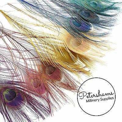 Dyed Peacock Feather for Millinery, Wedding Fascinators Single Feather