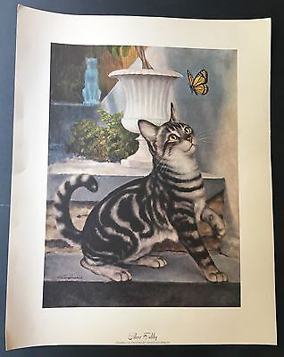 "AWESOME Set of 9 Vintage Girard Goodenow Cat Prints! Siamese, Tabby... 19"" x 15"""