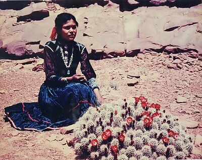 Josef Muench (American 1904-1998) Color Photograph Navaho Girl with Cactus