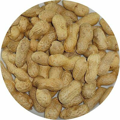 Monkey Nuts - Nuts In Shells - Squirrel - Parrots - Badgers -Wild Life - Birds