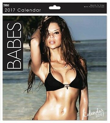 2017 Square Month To View Photo Wall Calendar - Babes - Brunette Front Cover