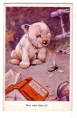 """BONZO DOG  Artist STUDDY  RPS Series # 1019 """"Now What About it"""" c.1920s postcard"""