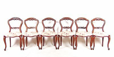 6 Balloon Back Dining Chairs Mahogany Six Swedish Chairs Antique Repro Set Six