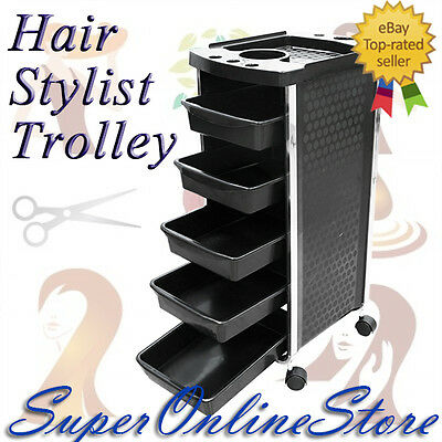 5Tier Hair Cut Beauty Hairdresser Coloring Salon Storage Dryer Scissors Trolley