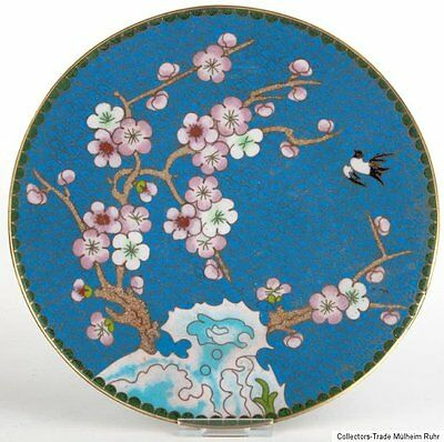 China 20. Jh. Teller - A Chinese Cloisonne Enamel Dish Piatto Cinese Chinois