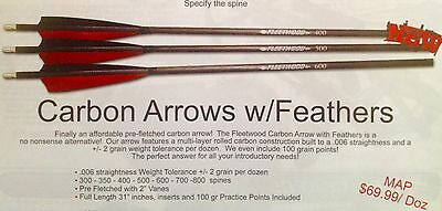Fleetwood Carbon Arrows with Feathers and 100 grain points 1dozen