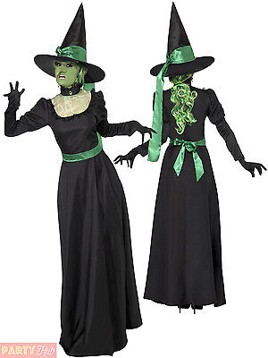 Ladies Wicked Witch Costume + Hat Black Traditional Halloween Fancy Dress Womens